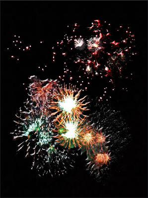 Digital Art - Dandelion Fireworks by Elisabeth Dubois