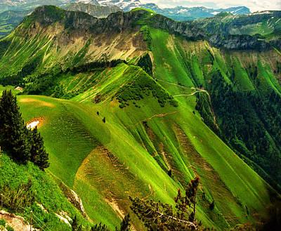 Y120831 Photograph - Dangerously Beautiful Paths by Katarina Stefanovic