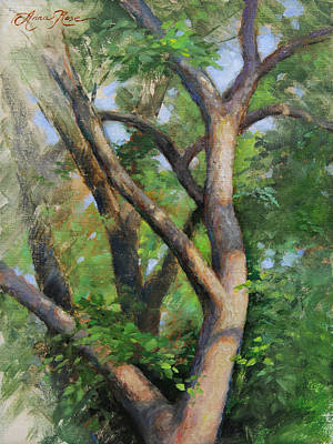 Early Spring Painting - Dappled Woods by Anna Rose Bain