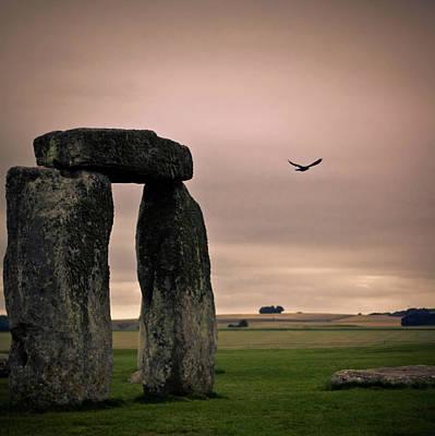Megalith Photograph - Dark Bird by Matthew Brown