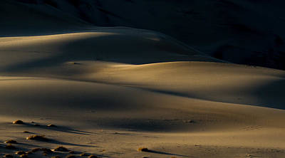Photograph - Dark Dunes by Jean Noren