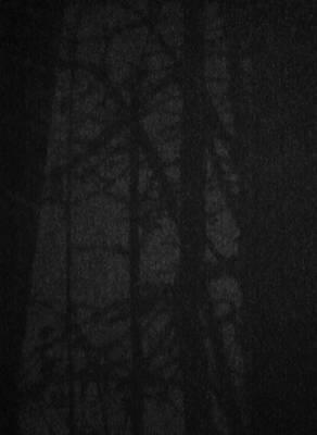 Dark Shadows Art Print