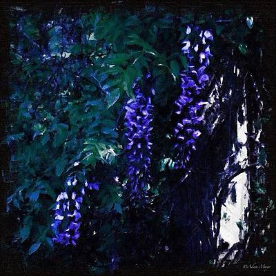 Iphone 4 Photograph - Dark Wisteria - In A Blackened by Photography By Boopero