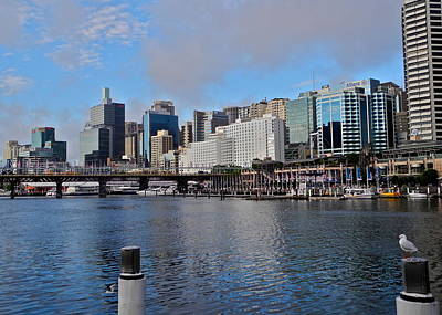 Photograph - Darling Harbor In Late Afternoon by Kirsten Giving