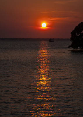 Photograph - Darwin Sunset by Zoe Ferrie