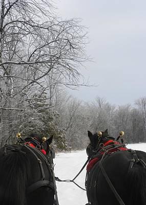 Photograph - Dashing Through The Snow by Peggy  McDonald