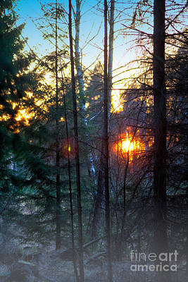 Photograph - Dawn by Bodo Herold