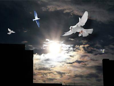 Digital Art - Dawn Flight by Terry Wallace