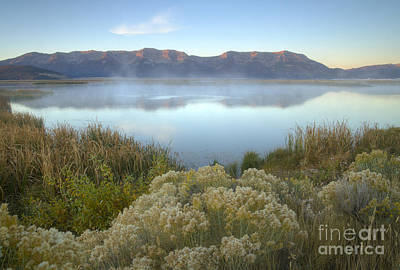 Photograph - Dawn On The Centennials by Idaho Scenic Images Linda Lantzy