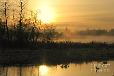 Photograph - Dawn's Early Light by Frank Townsley