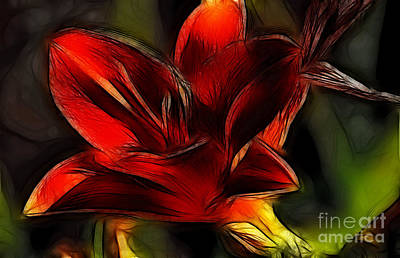 Photograph - Day Lily Fractal by Donna Greene