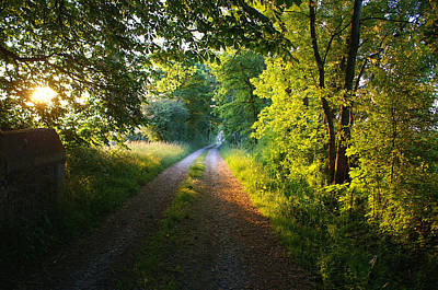 French Countryside Photograph - Daylight Breaks On A Burgundy Road by Shawn Shea