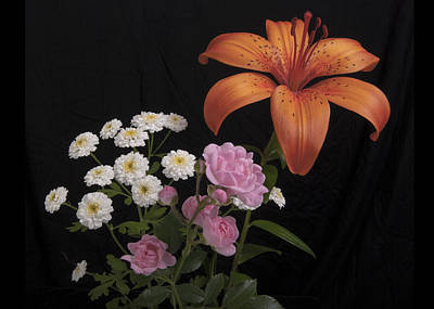 Daylily And Roses Art Print by Michael Peychich