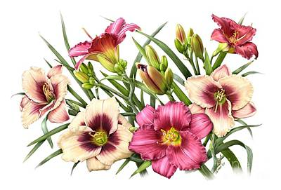 Painting - Daylily Bouquet - Rubies by Artellus Artworks