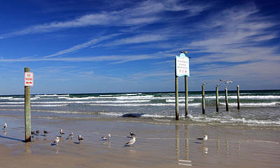 Photograph - Daytona Beach I by Mary Haber