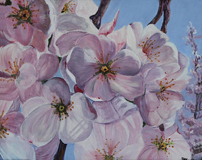 Painting - Dc Cherry Blossoms by Pauline  Kretler