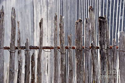 De-fence Art Print by Ken Williams