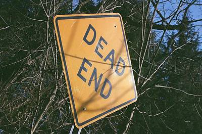 Photograph - Dead End At An Angle by Sarah Reed