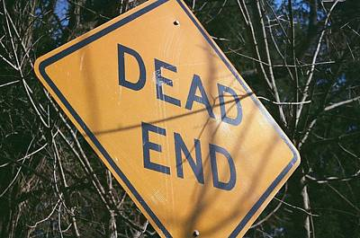 Photograph - Dead End by Sarah Reed