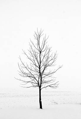 Dead Of Winter Art Print by Doug Hockman Photography
