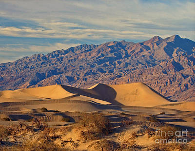 Photograph - Death Valley National Park Sand Dunes And Mountains by Schwartz Nature Images