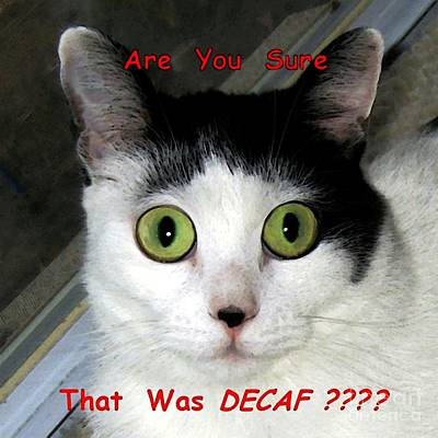 Caption Digital Art - Decaf Or Regular by Dale   Ford