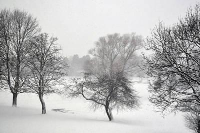 Photograph - December  by Dragan Kudjerski
