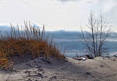 Woodlawn Photograph - December Dune by Peter Chilelli