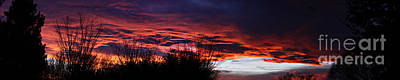 Photograph - December Sunset by Shawn Naranjo