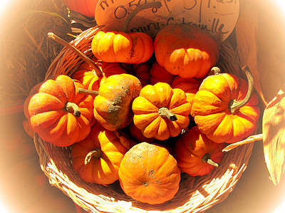 Photograph - Decorative Gourds At The Farmer's Market by Chantal PhotoPix