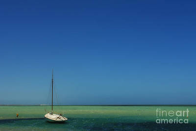 Photograph - Deep Emerald by Roberto Bettacchi