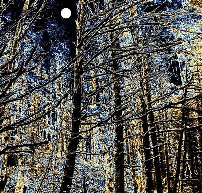 Deep In The Moonlit Forest Art Print