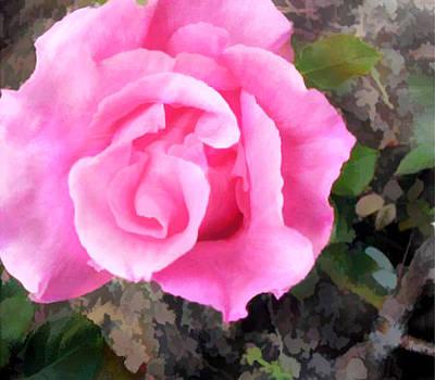 Deep Pink Watercolor Rose Blossom Art Print by Elaine Plesser