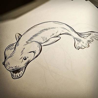 Brush Wall Art - Photograph - #deepsea #shark # Drawing by Jeff Reinhardt