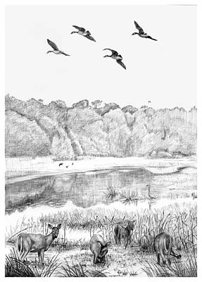 Deer And Geese - Lake Mattamuskeet Art Print by Tim Treadwell