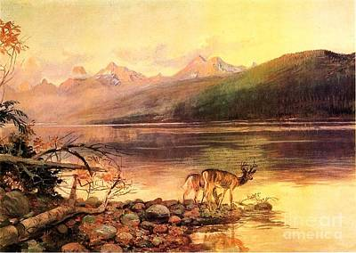 Painting - Deer At Lake Mcdonald by Roberto Prusso