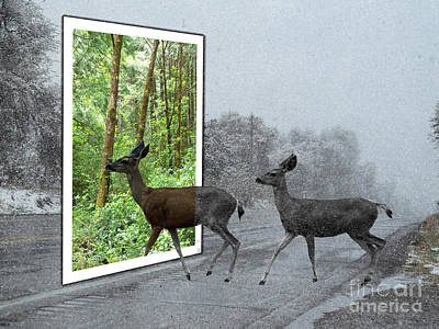 Deer Crossing Print by Methune Hively