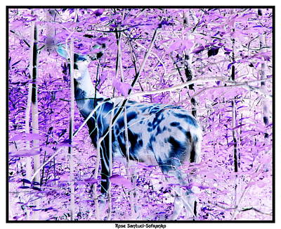 Negative Effect Digital Art - Deer In The Woods Inverted Negative Image by Rose Santuci-Sofranko