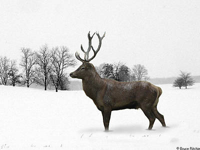 Mixed Media - Deer In Winter by Bruce Ritchie