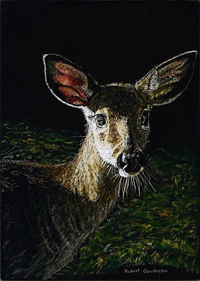 Painting - Deer Portrait by Robert Goudreau