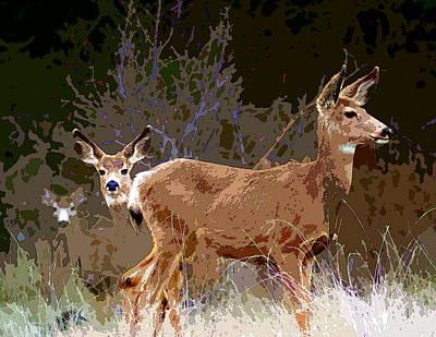 Photograph - Deer Prudence 2 by Ben Upham III