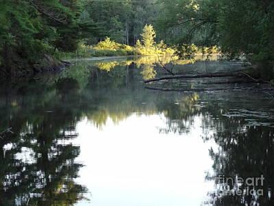 Deer River In Early Sun Art Print