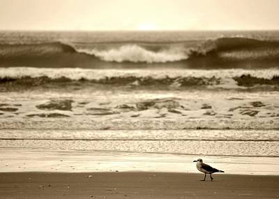 Art Print featuring the photograph Deliberate Solitude by Kelly Nowak