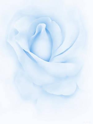 Photograph - Delicate Blue Rose Flower by Jennie Marie Schell