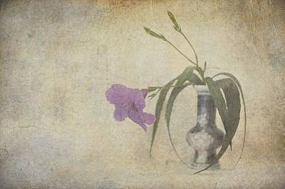Photograph - Delicate Touch Of Purple by Jan Amiss Photography