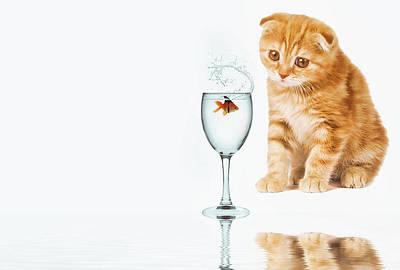 Goldfish Digital Art - Delusions Of Grandeur by Pranav Babu