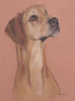 Pastel - Demo The Hero Dog by Suzanne Giuriati-Cerny