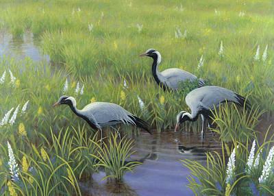 Demoiselles Painting - Demoiselle Cranes In Spring by Jon Janosik