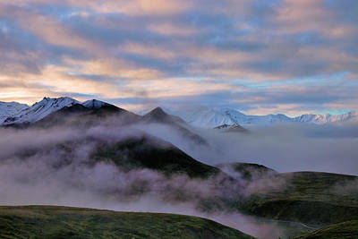 Photograph - Denali Dawn by Rick Berk