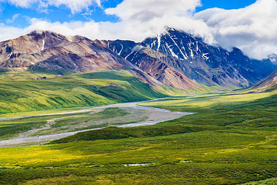 Denali National Park, Alaska Usa Art Print by Feng Wei Photography